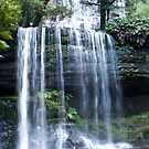 Russell Falls by Catherine Davis