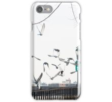 Seagulls at the East River iPhone Case/Skin