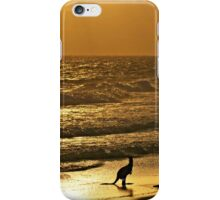 Early one morning,  just as the sun was rising. iPhone Case/Skin