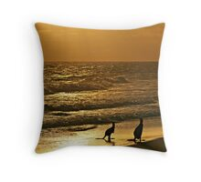 Early one morning,  just as the sun was rising. Throw Pillow