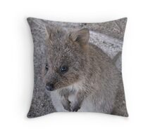 Hello Quokka - Rottnest Island 1 Throw Pillow