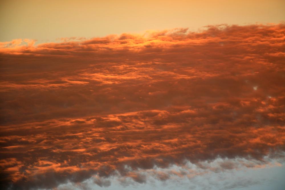 The On Earth As It Is In Heaven. by Zaldy Infante