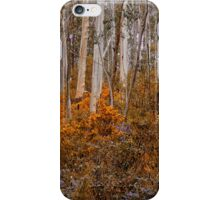 Colour My  World - Mount Wilson NSW -The HDR Experience iPhone Case/Skin