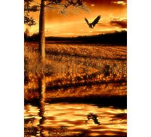 Amber dream Photographic Print