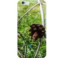 Tiny Pine Cone Photo iPhone Case/Skin