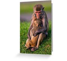 Mother Love (Rhesus Monkeys) Greeting Card