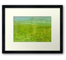 Pond Framed Print