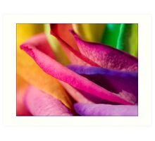 Sari Blend Art Print