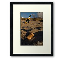 Such A Perfect Day Framed Print