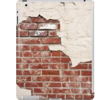 Grunge Plaster Brick Wall iPad Case/Skin