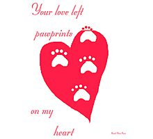 Pawprints Photographic Print