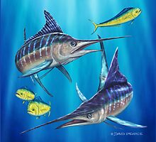 Double Trouble - Striped Marlin by David Pearce