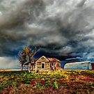 In the line of the storm by Alan Gamble