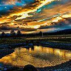 Sunset #51 by Richard Bozarth