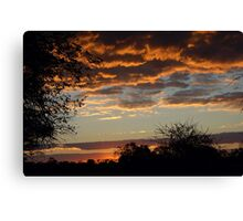"TYPICAL ""BUSHVELD"" SUNSET Canvas Print"
