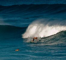 Hawaiian Surf by Denatured