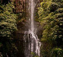 Hana Waterfall by Denatured