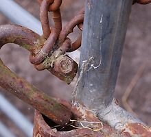 Rusty Gate Lock by Barbara Caffell
