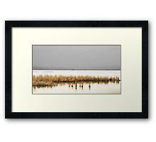 Reeds Flying By  Framed Print
