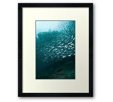 Watched from above and below Framed Print