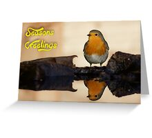 Robin Red-breast Greeting Card