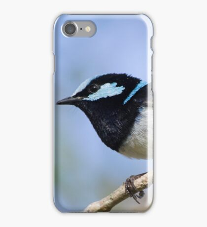 Surveying Territory iPhone Case/Skin