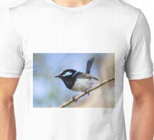 Surveying Territory Unisex T-Shirt