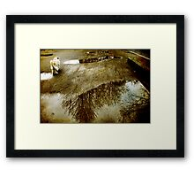 Road Pic Framed Print