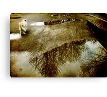 Road Pic Canvas Print