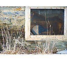 Foundation Window Photographic Print