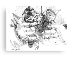Cradling Kittens Canvas Print