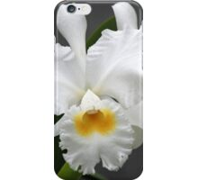 Twin Beauties iPhone Case/Skin