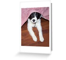 Am I In Trouble Again? Greeting Card