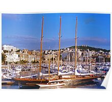 Palma Harbour Poster