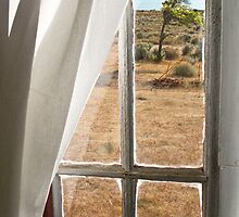 View from Casa Museo Jose Lively- Estancia Maipu- Patagonia by David Chesluk