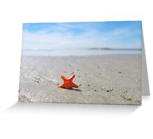 Sea-star Greeting Card