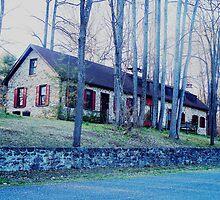 Rose Cottage  - Part 1 of 6 by Judi Taylor