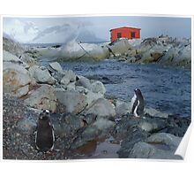 Port Circumcision, Antarctica Poster