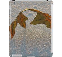 Fall and Winter Mingle iPad Case/Skin