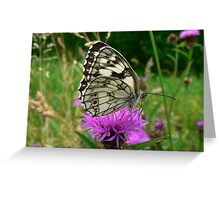 Beautiful Butterfly... Greeting Card