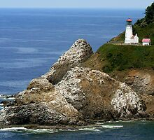 Heceta House Lighthouse by toddfamily88