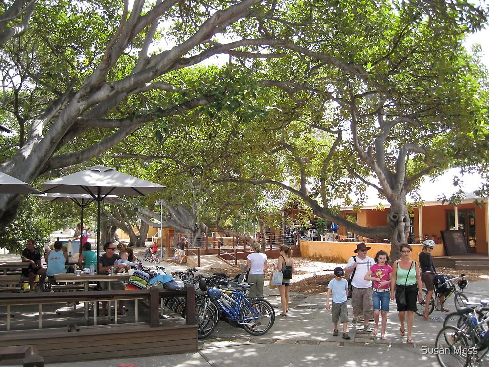Rottnest Island Village 4 by Susan Moss