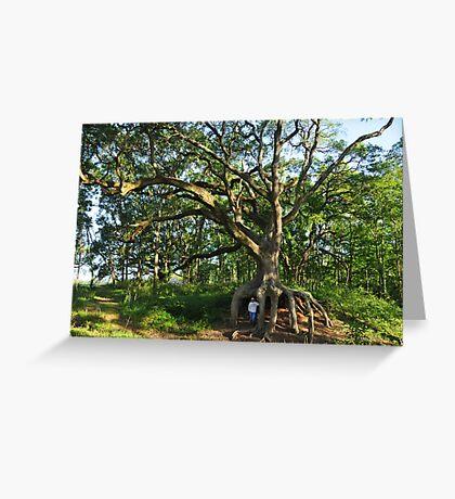 Under the Old Oak Tree II Greeting Card