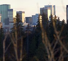 Edmonton Skyline Panorama by Evan Adnams