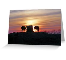Salutation To The Sun Greeting Card