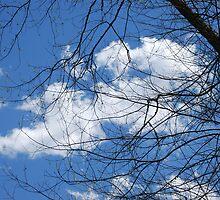 Whisper of Heaven by PhyllisAnne Pesce