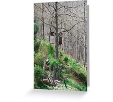 Nature's Easel Greeting Card