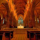 St Mary's Cathedral - Sydney, Australia by Dev Wijewardane