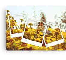 Retro photo collage of yellow flowers and butterfly Canvas Print