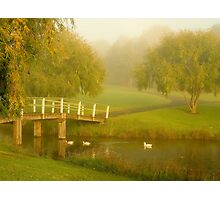 Morning delight Photographic Print